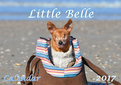 Little Belle Calendar 2017