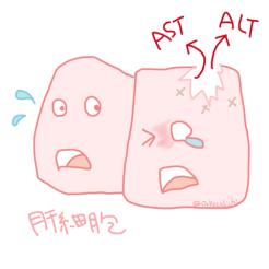 肝細胞から漏れるASTとALT