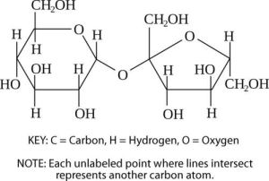 Carbohydrates   CK12 Foundation