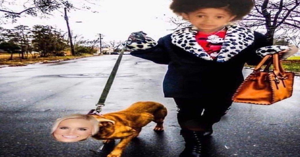 Image result for cardi b dog walk