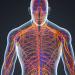 Mesleki Sinir Sistemi Hastalıkları ARALIK 2018