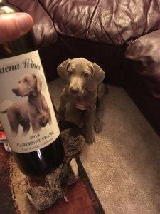 Wine Weimies