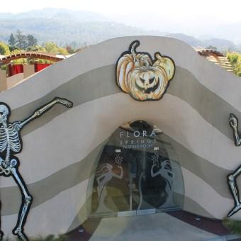 Flora Springs Skeletons Decorations