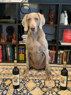 Banksy Weim with Reserve