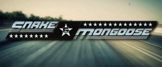 Snake_mongoose_logo640