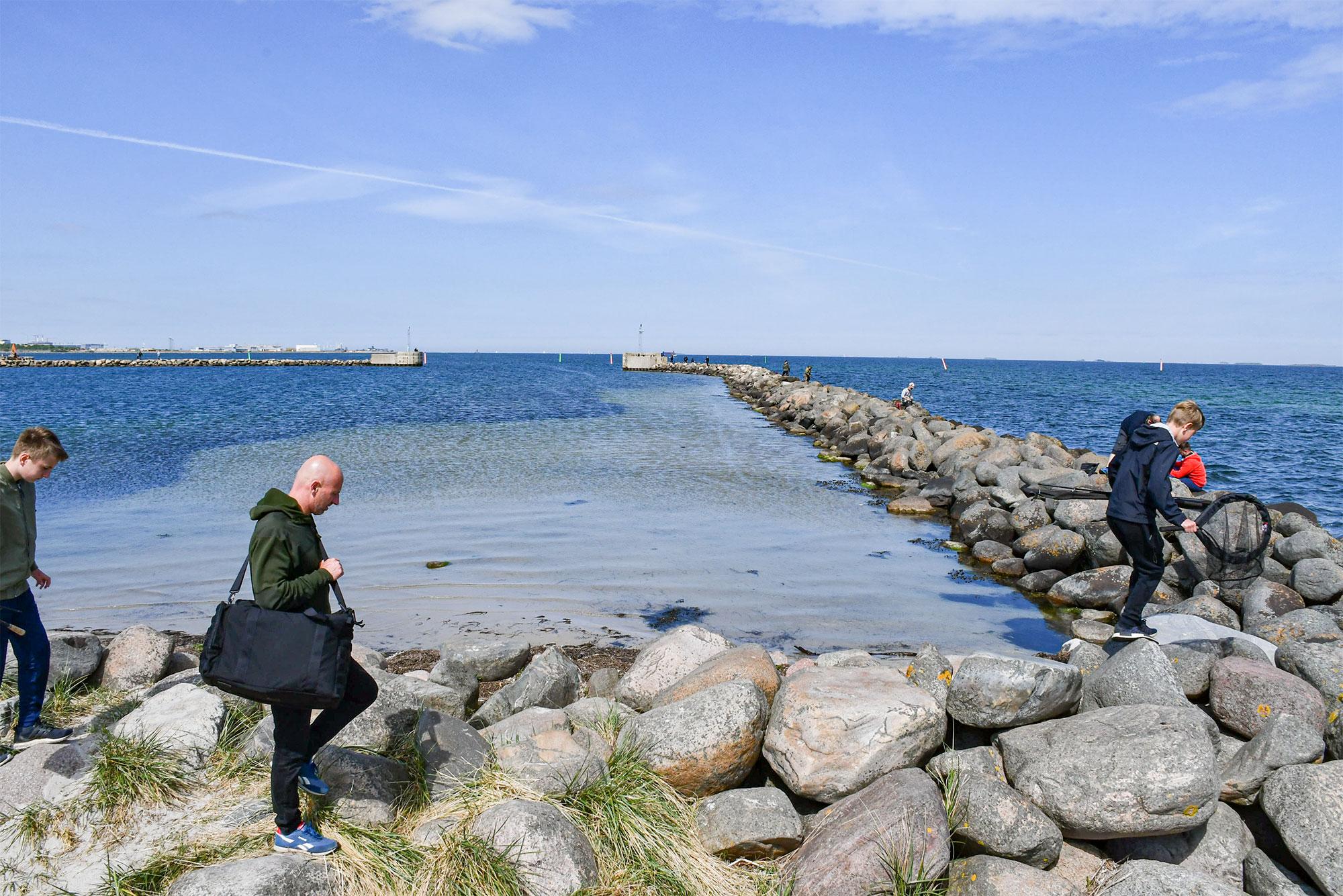 Havnebassinet i færgehavnen skal også uddybes, så ind- og udsejlingen fra Ny Havn sikres. På den lange bane håber man på muligheden for at udnytte og anlægge pladser i færgehavnen, som i dag er en B-havn. Klassificeringen af en havn har især betydning, når man skal have sin båd forsikret (Gamle Havn og Ny Havn er begge A-havne). Foto: Ebbe Kyrø.