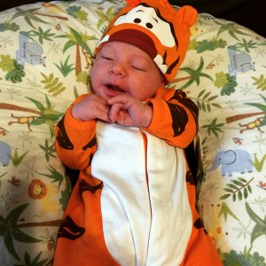 Young Sir as Tigger the day before Halloween