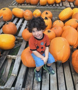 Little Prince at the Pumpkin patch