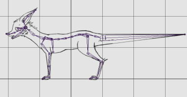Dog Skeleton with Reference