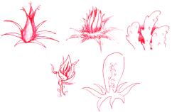plantsplanned