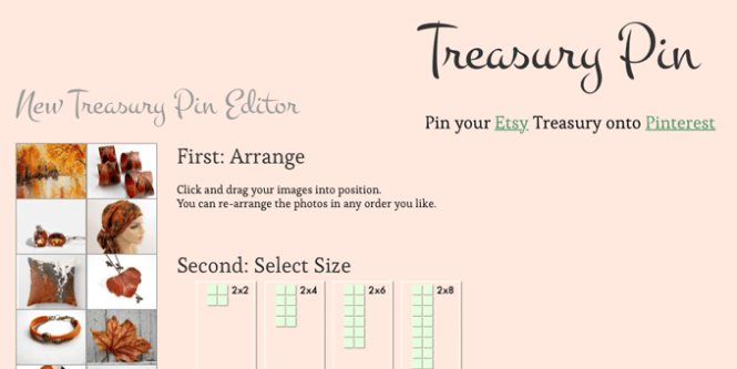 treasury-pin