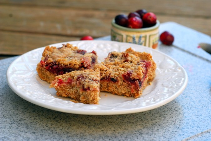 cranberry bars on porch 3