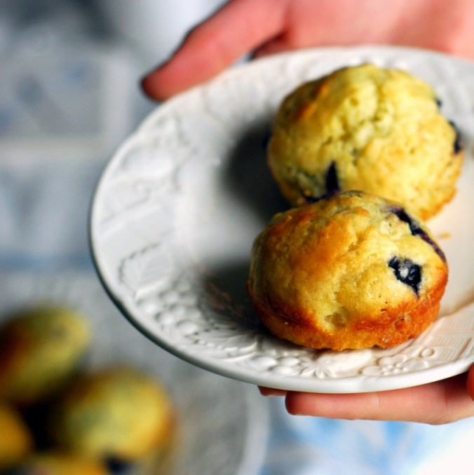 classic blueberry muffins on plate 2