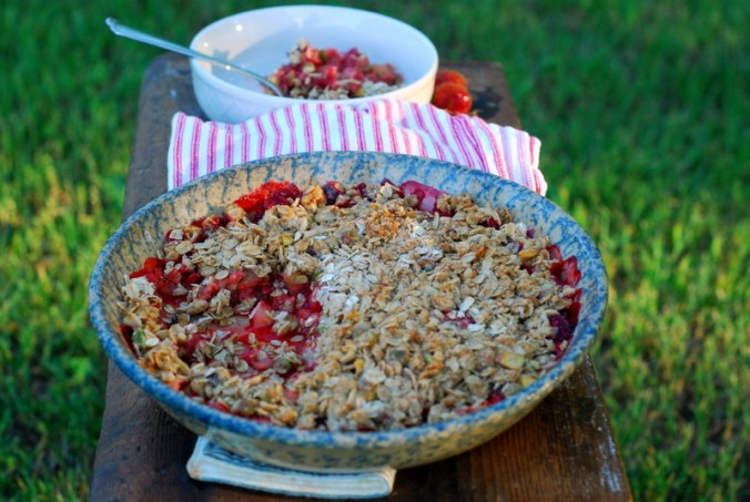 strawberry rhubarb crisp outside