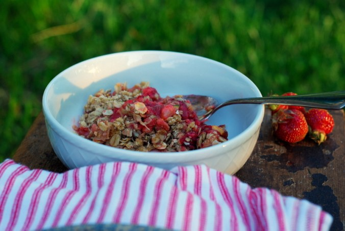 strawberry rhubarb crisp and grass