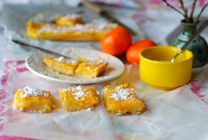 citrus bars and oranges