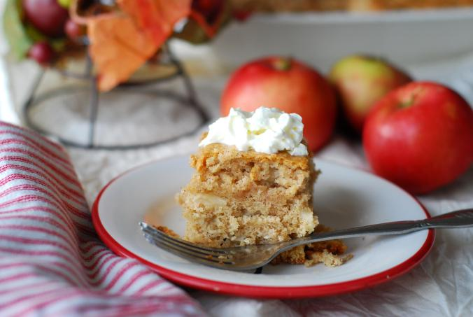 apple snacking cake 1801