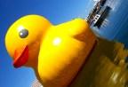 Florentijn Hofman. Rubber Duck.