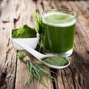 Green_Drink_Products_grande