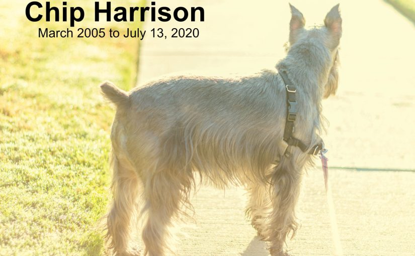 Chip Harrison – March 21, 2005 – July 13, 2020