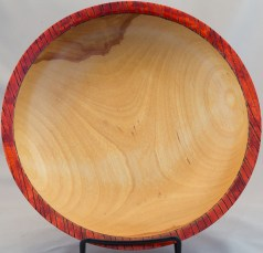 Birch with Red Rim