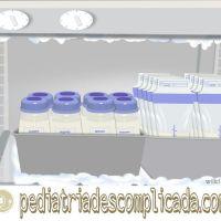 Como armazenar leite materno: o que você precisa saber