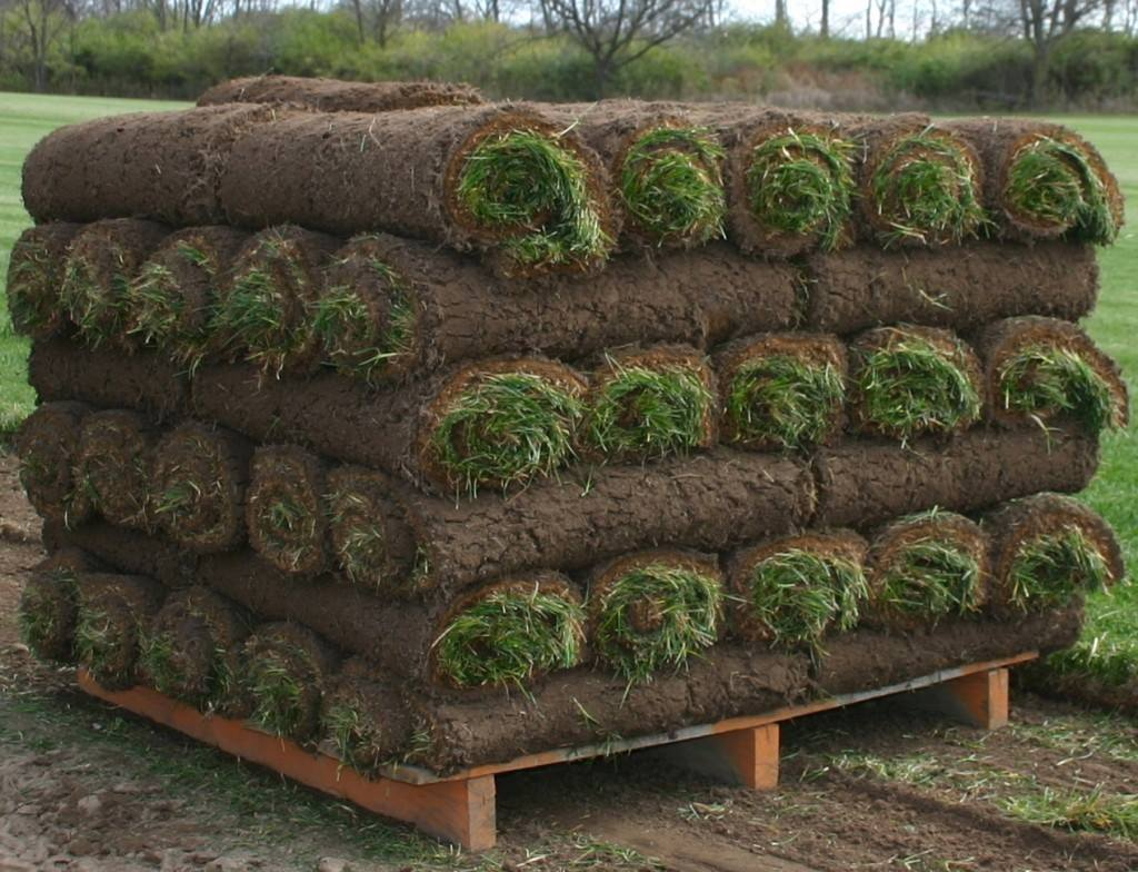 stack-of-sod