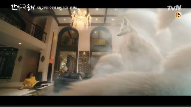 Gumiho si rubah ekor 9 (tvN)
