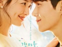 Drama Korea Hometown Cha-Cha-Cha Episode 16 Subtitle Indonesia