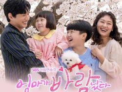 Sinopsis Dan Profil Lengkap Pemeran K-Drama SBS Mom Has An Affair 2020