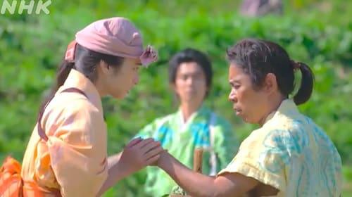 大河ドラマ『麒麟がくる』第3回 感想 薬草デート