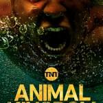 Animal Kingdom – Season 3 [Streaming] (Ep 1 – 9)