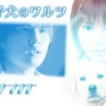 Koinu no Waltz / 仔犬のワルツ (2004) [Completed]