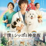 Boku to Shippo to Kagurazaka / 僕とシッポと神楽坂 (2018) [Ep 1 – 8 END]