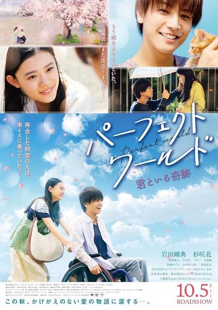 Perfect World / パーフェクトワールド 君といる奇跡 (2018)