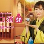 Wakako Zake Special Hida Sake Brewery Tour (2020)