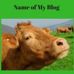Why is the Name of My Blog Dramamommaspeaks?