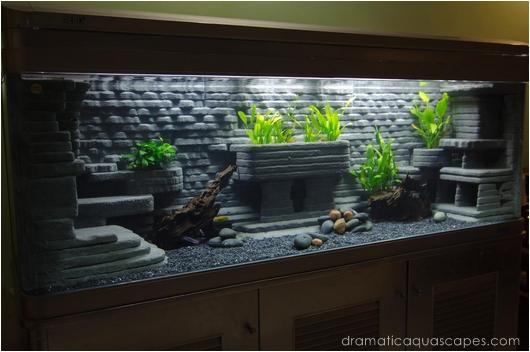 Cheap Aquarium Plants Sale