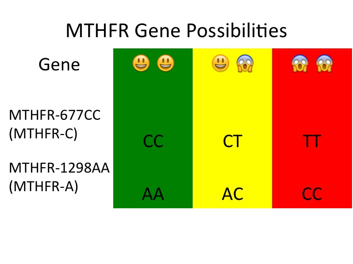 MTHFR-A | To Health With That!