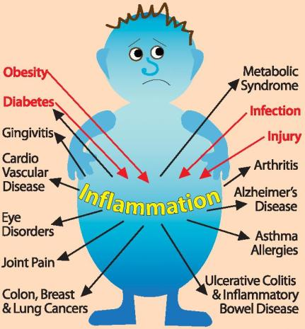 Just like there are so many factors that cause inflammation, there are also so many consequences. This great picture was borrowed from this excellent post on foods that help inflammation.