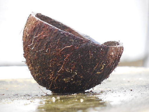 Coconut oil or MCT oil - one of the best supplements for Alzheimer's disease. Photo by Aravind Sivaraj.