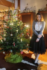 Frohe Weihnachten / Merry Christmas