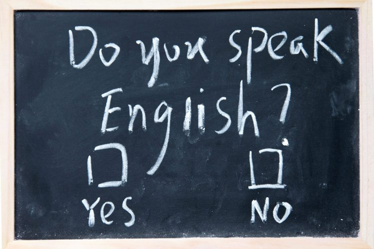vecteezy_chalkboard-with-english-test-and-check-boxes_952131-min