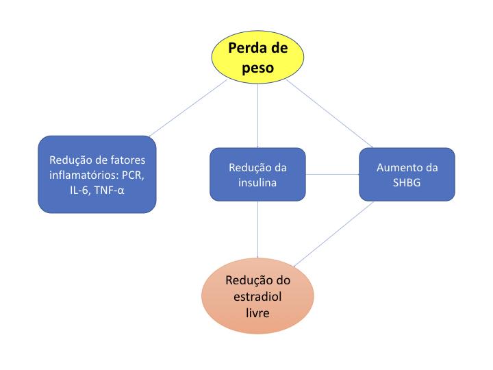 Mecanismo perda de peso na redução do risco de câncer