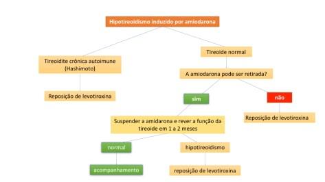 Algoritmo do manejo do hipotireoidimos induzido por amidorona