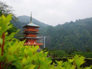 日本人なら一度は歩いてみたい熊野古道②。古人の道を辿る旅(那智の瀧を巡る)