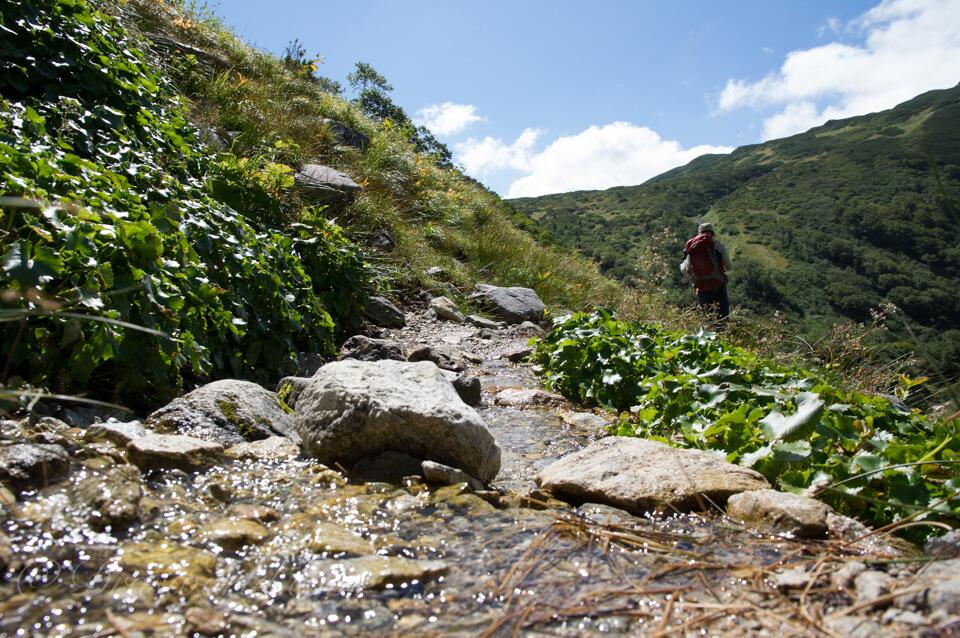 鷲羽岳の湧き水でできたストリーム