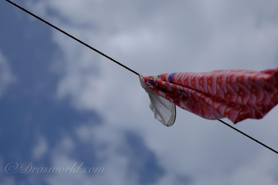 XF90mm 絞り開放f/2で撮影した鯉のぼり2