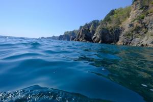 爽快なクルージング体験、田野畑村のサッパ船で楽しむ断崖絶壁の地形