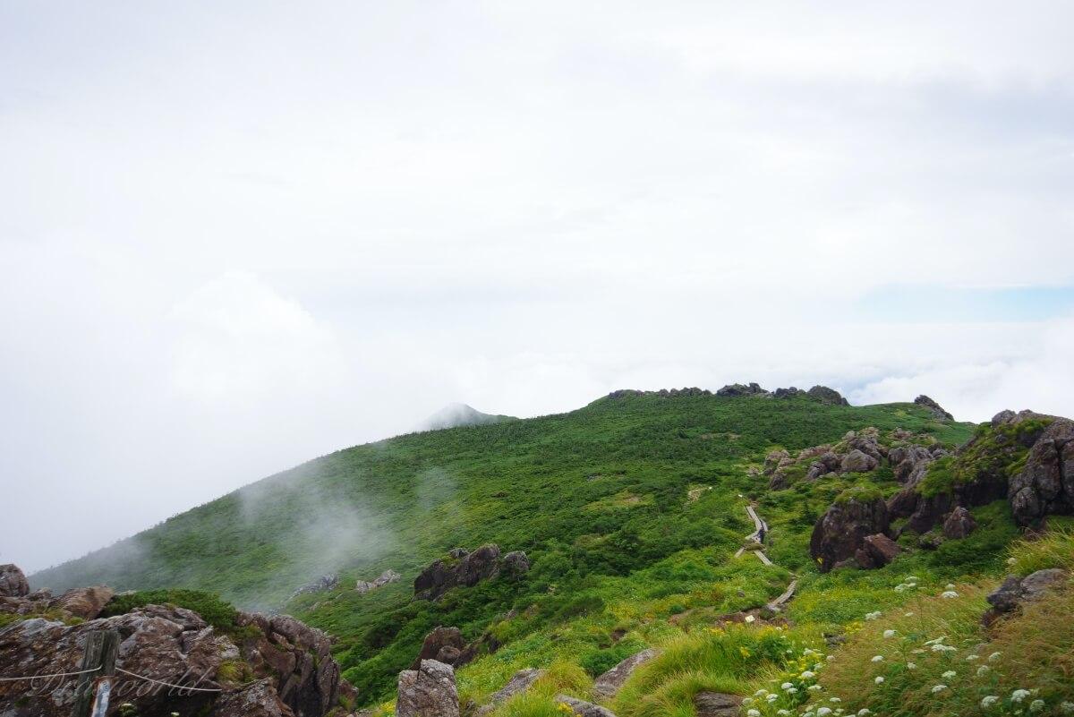 霧舞う夏の早池峰山(小田越コース)